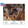 Animal Babies - 2015 Calendar